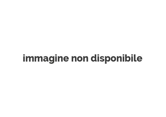 Agri Piacenza Latte Soc. Agr. Cons. a r.l.